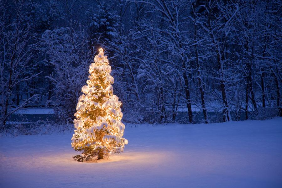 weihnachten bei den rangers am 16 dezember treffen am lidl parkplatz rr250. Black Bedroom Furniture Sets. Home Design Ideas